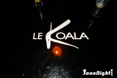 Koala - Samedi 11 juillet 2009 - Photo 1